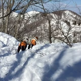 先日の雪山ハイク。シロちゃんと仲良くトコトコ。少しだけ早送りしてます。#ジャックラッセルテリア #雪山ハイク #dogstagram #dogslover #jackrussellterrier #snowdog #snowhike #jrt #